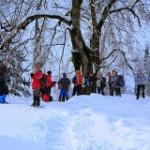 2014.02.09-sentiero-grandi-alberi-150x150